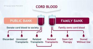 بانک خون بند ناف چیست؟ درمان بیماری ها با بند ناف نوزاد